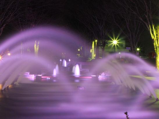 つつじが岡公園 イルミネーション・ライトアップ 噴水
