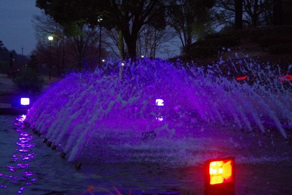 つつじが岡公園 イルミネーション・ライトアップ 噴水広場