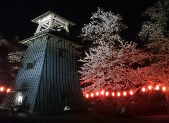 夜桜 沼田公園