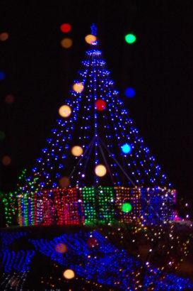 つつじが岡公園 イルミネーション・ライトアップ LED