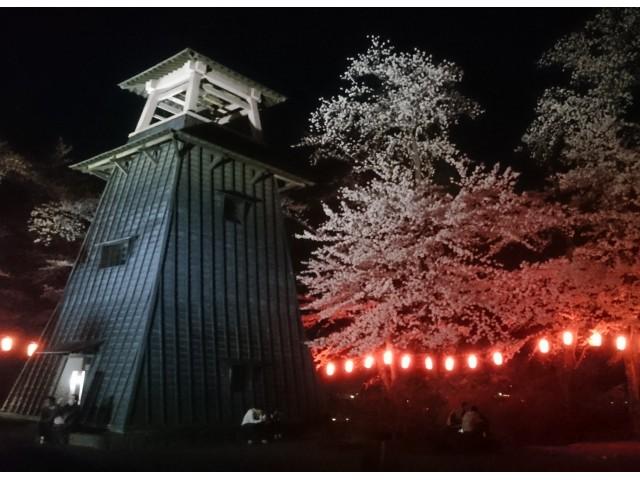 群馬 夜桜 ライトアップ おすすめ