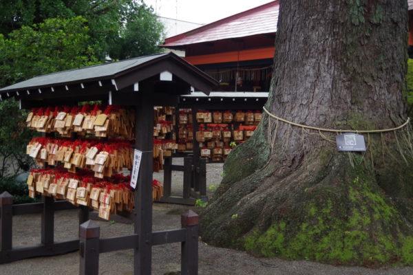 冠稲荷神社 絵馬