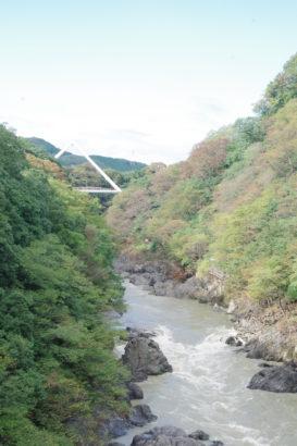 高津戸峡 はねこし橋 渓谷美