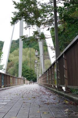 高津戸峡 はねこし橋 歩行者専用橋 タイル