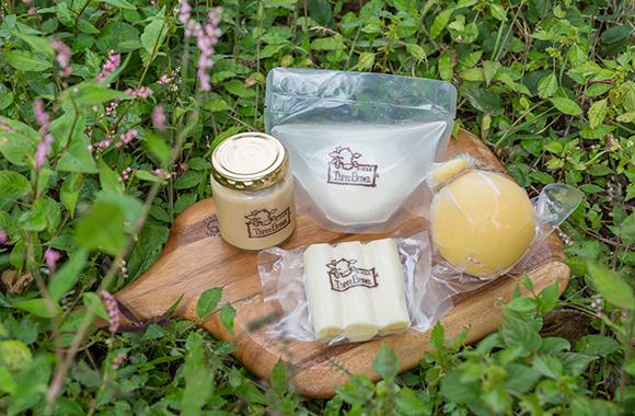 まえばし発酵めぐりの旅 チーズ工房スリーブラウン