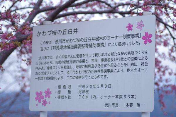 かわづ桜の丘白井 看板