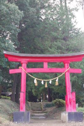 土師神社 赤い鳥居