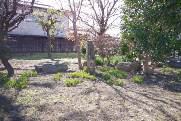 旧本間酒造 庭2