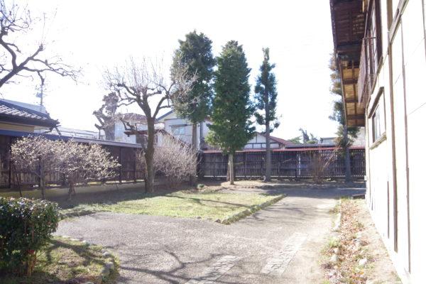 旧本間酒造 庭