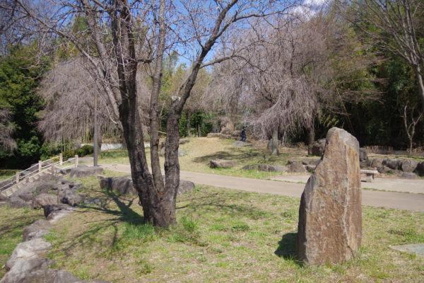 三ツ寺公園 敷地内風景