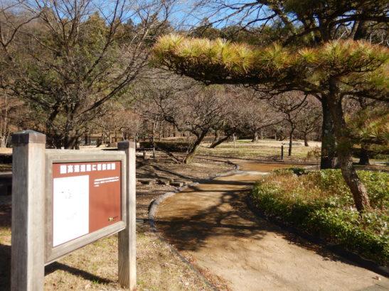 横川サービスエリア上り SA内の公園