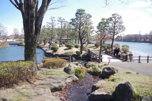 三ツ寺公園 日本庭園風景