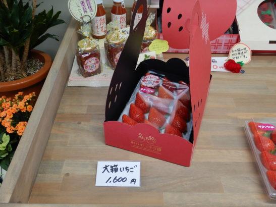 れいわイチゴ園 大箱イチゴ