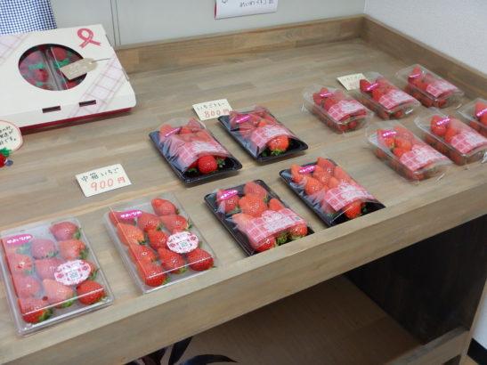 れいわイチゴ園 直売所で販売されているイチゴ