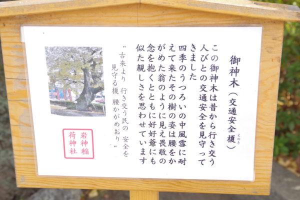 岩神稲荷神社 御神木の案内板