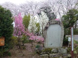 尾曳稲荷神社 田山花袋の歌碑