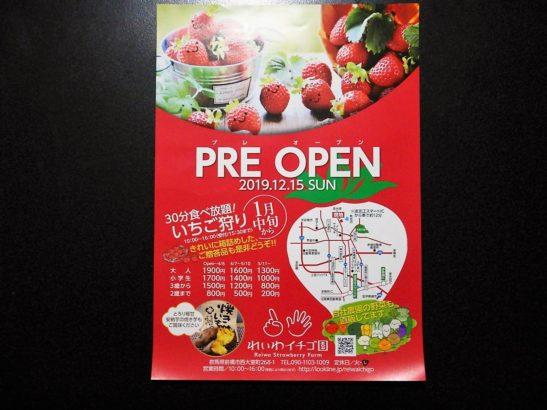 れいわイチゴ園 プレオープンのパンフレット