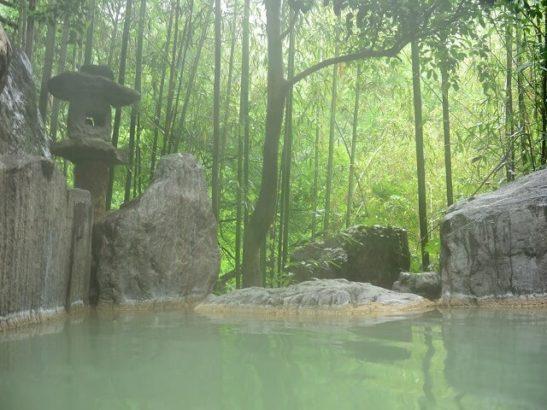 法師温泉長寿館 自然あふれる温泉