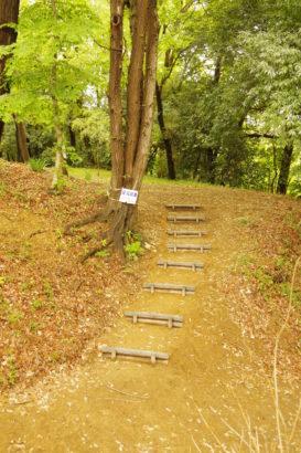山上城跡公園 遊歩道