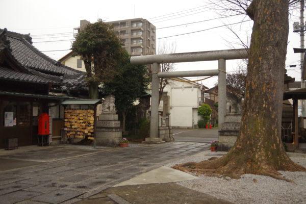 伊勢崎神社 境内