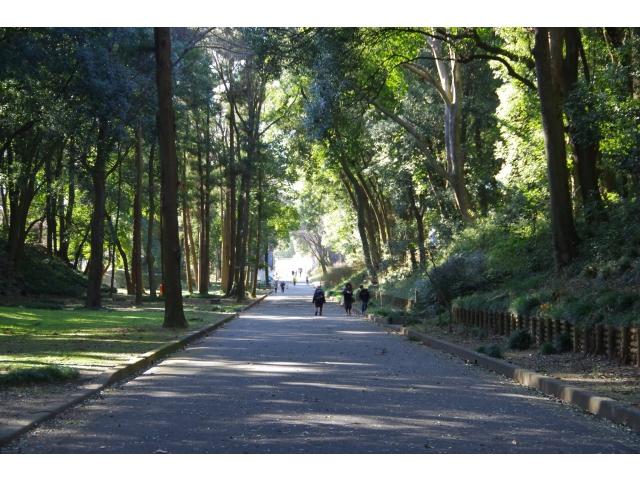 群馬の森 遊歩道