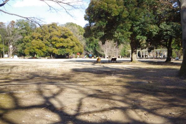 群馬の森 大芝生広場2