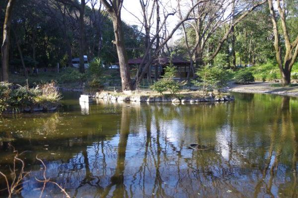 群馬の森 小さな池