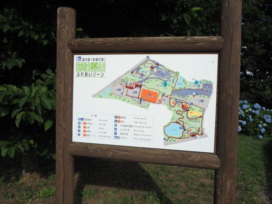荻窪公園 地図