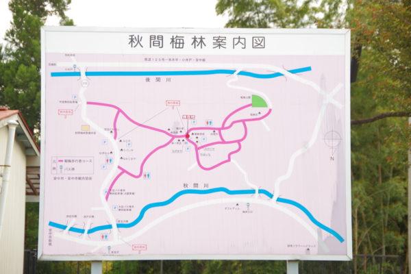 観梅公園 案内図