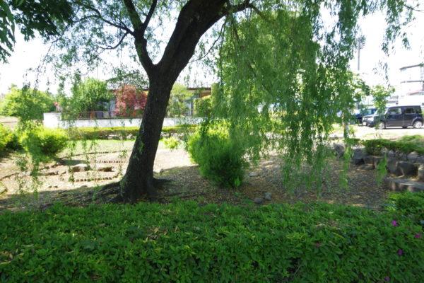 あずま水生植物公園 ホタル池