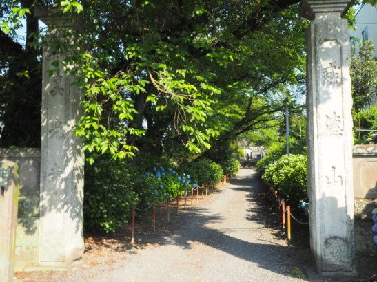 真光寺 石柱の門