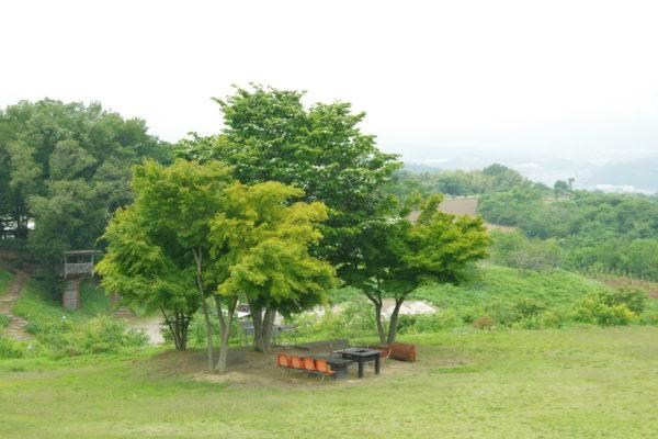 希望の丘農園 園内