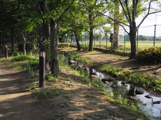 玉村町北部公園 自然とやすらぎのゾーン
