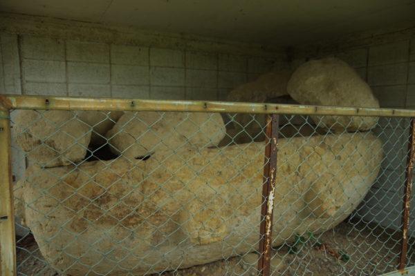 舟形石棺 展示品 石棺