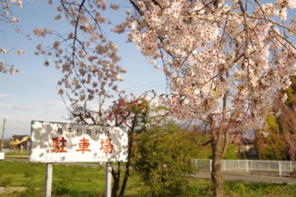 烏子稲荷神社 駐車場