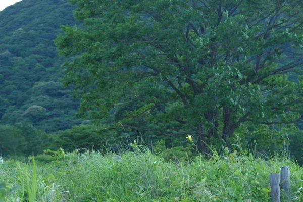 榛名山 景色