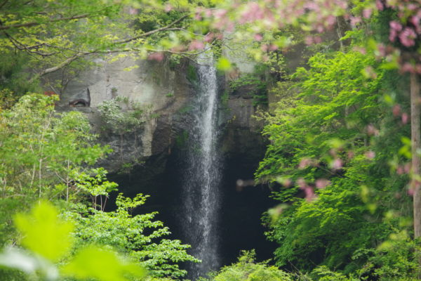 棚下不動の滝 滝