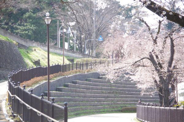 楽歩堂前橋公園 園内