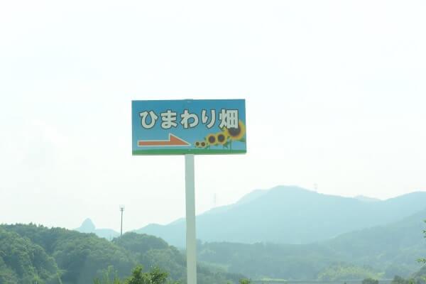 丹生湖 ひまわり畑 看板