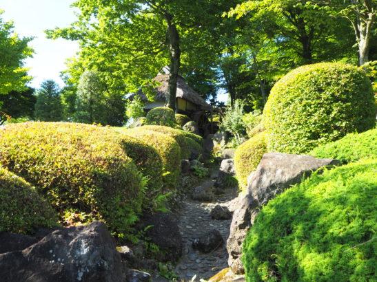 愛宕山ふれあい公園 噴水広場 池