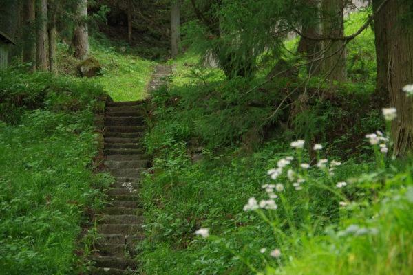 仙人窟 階段