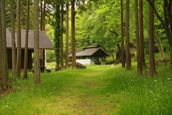 沼尾川親親水公園 緑の広場