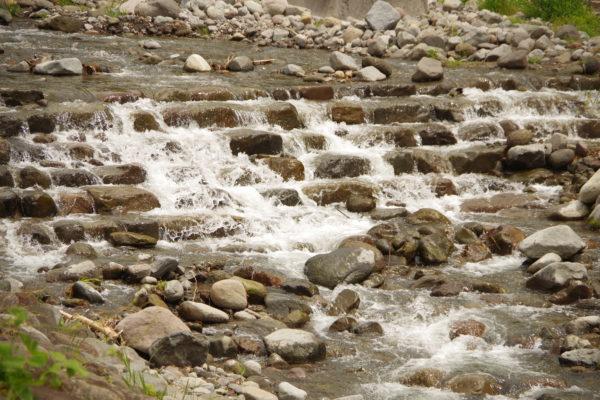 沼尾川親親水公園 川