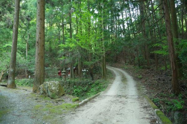 吉井町 林道