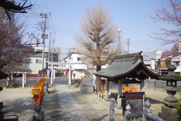 前橋八幡宮 神社