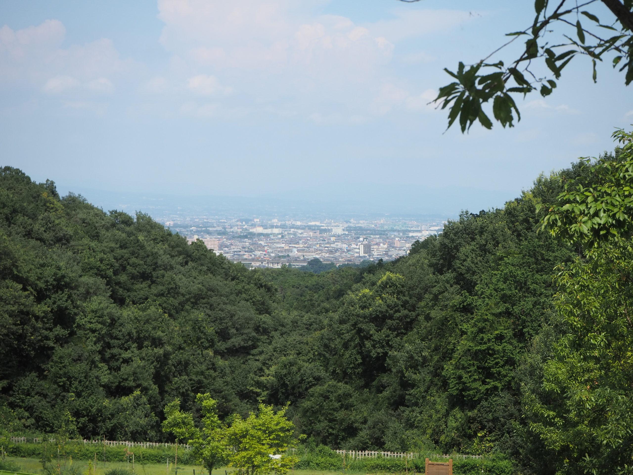 景色 観音山ファミリーパーク