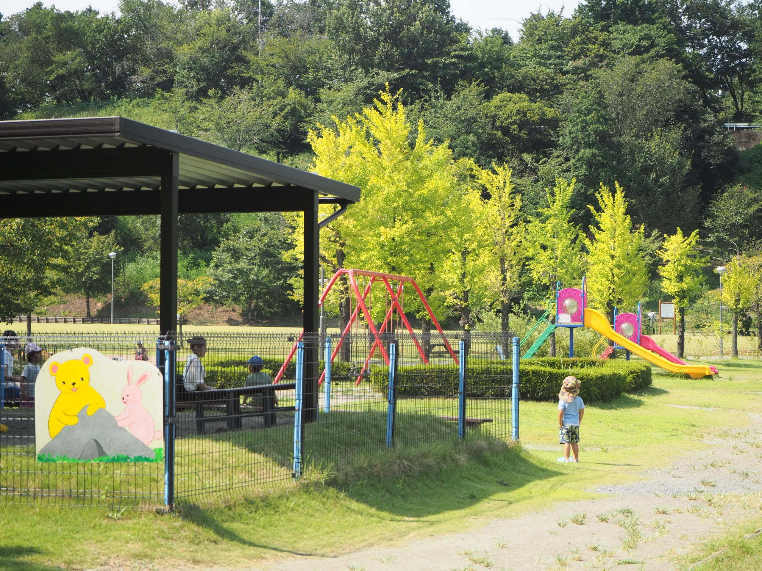 健康遊具 観音山ファミリーパーク