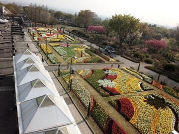 ぐんまフラワーパーク メインエリア フラトピア大花壇