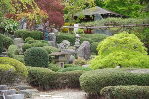 仁叟寺 庭園
