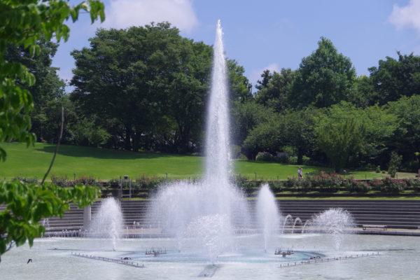 ぐんまフラワーパーク 噴水エリア ぐんまの池